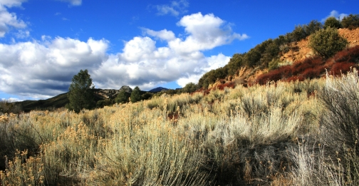Sespe Wilderness Panorama