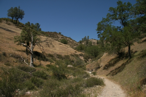 California Trail