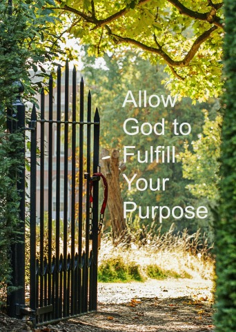 Allow God To Fulfill Your Purpose