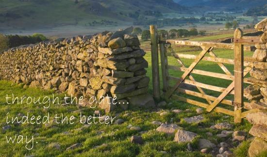 choose to walk through the gate
