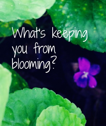 What's keeping you from blooming?